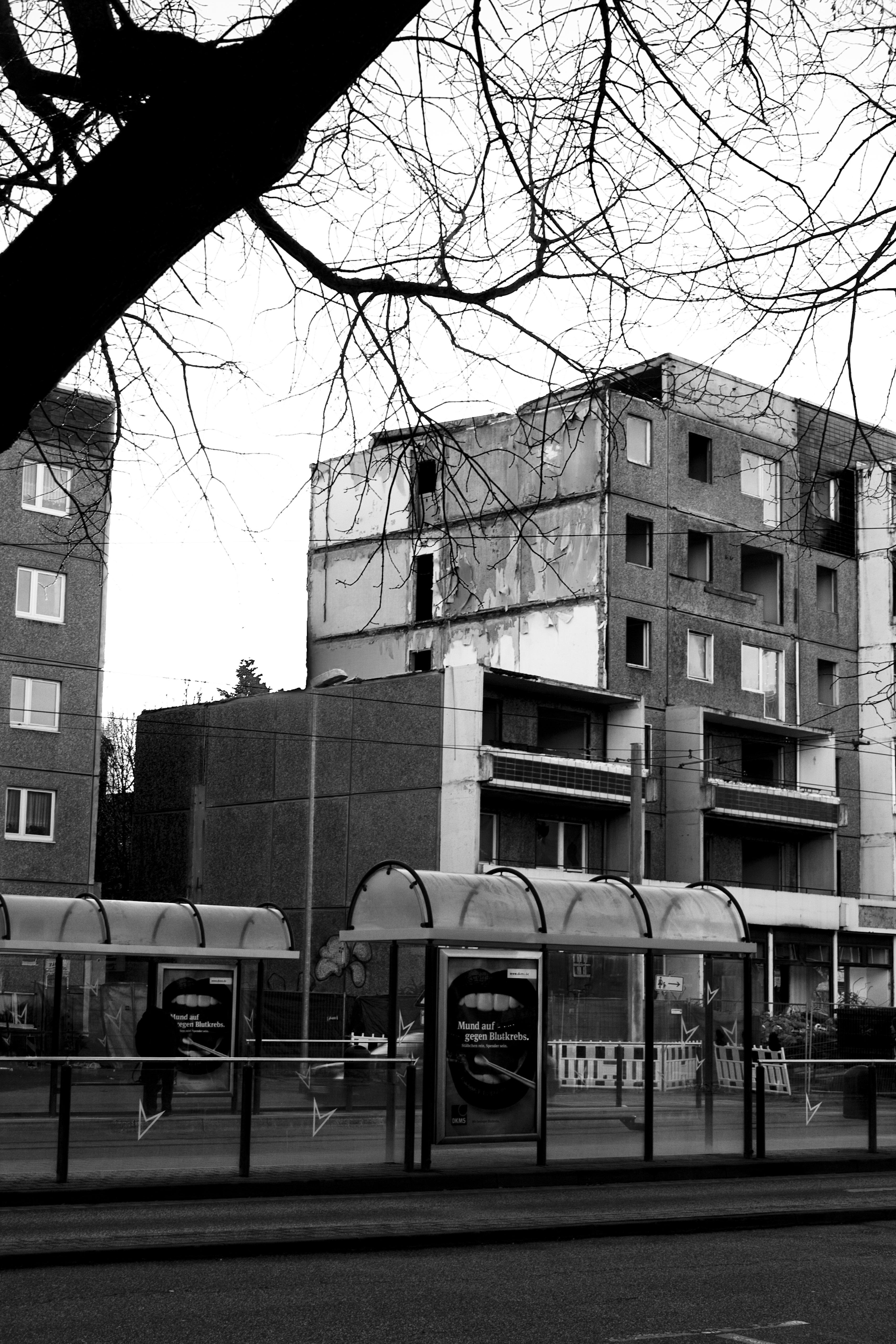Abriss der Wohnblöcke in der Kühlingerstraße